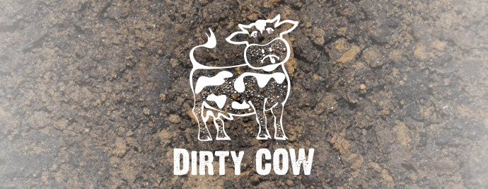dirty-cow